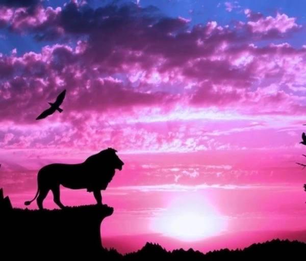 【獅子座新月】ただ、理想の自分に想いを馳せる時