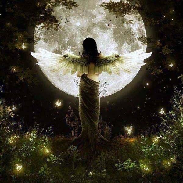 【牡羊座の満月】受け取る準備を整える